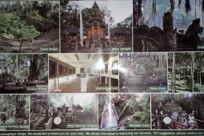 Monkey Forest 00021
