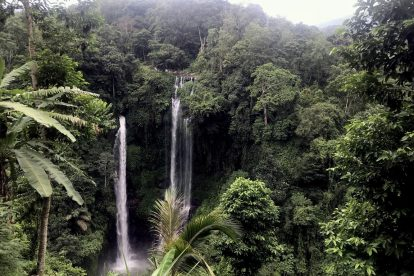Sekumpul Waterfalls 04