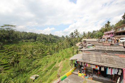 Tegallalang Rice Terrace 05